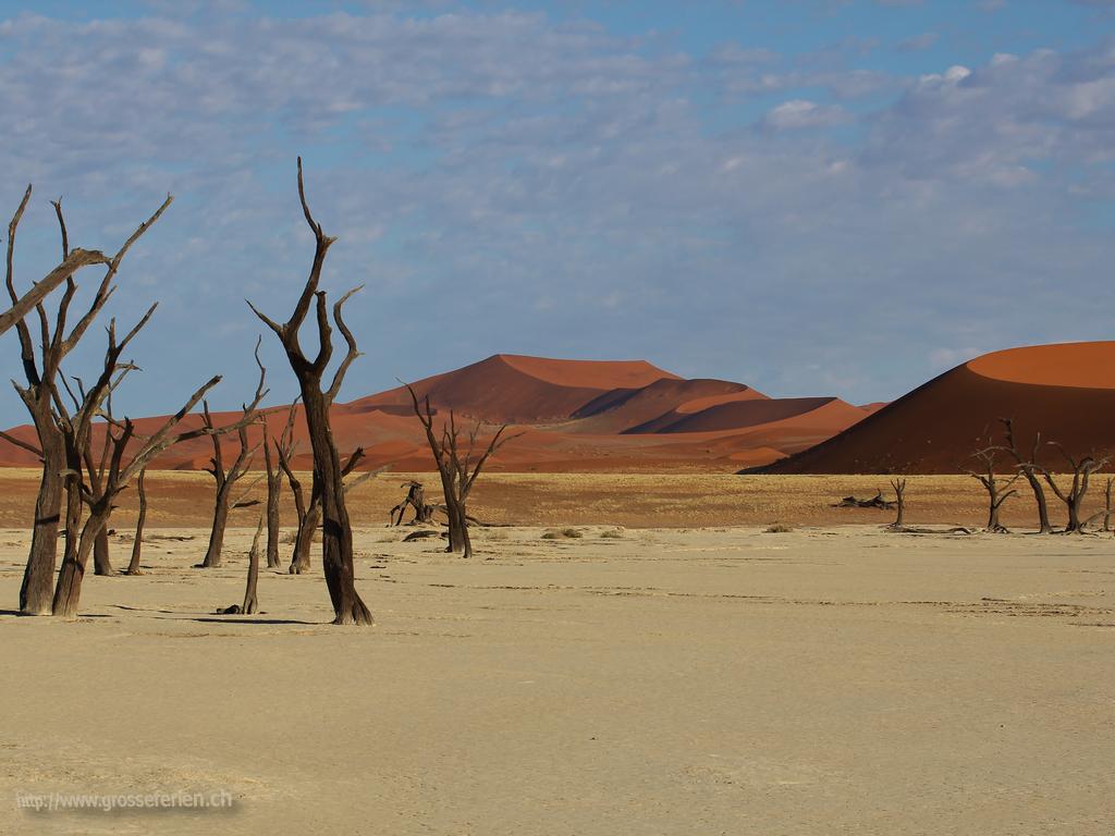 Namibia, Sesriem, Vlei