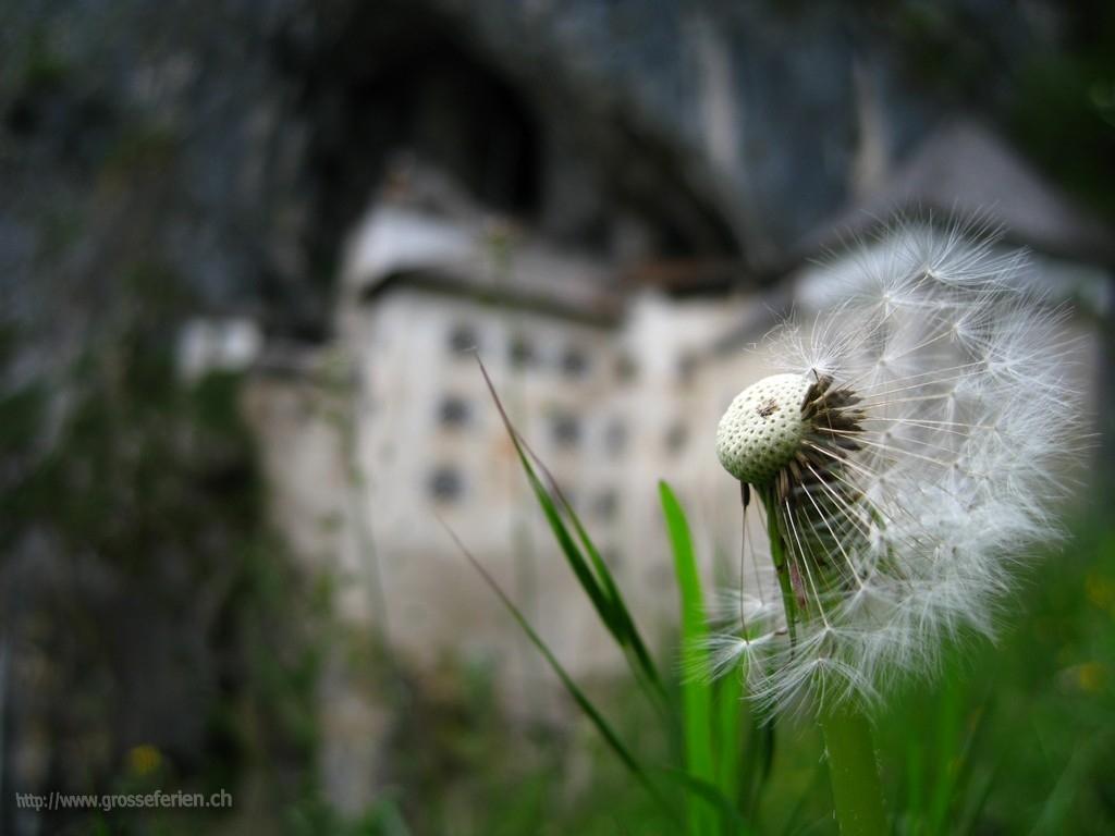 Slovenia, Predjama, Castle