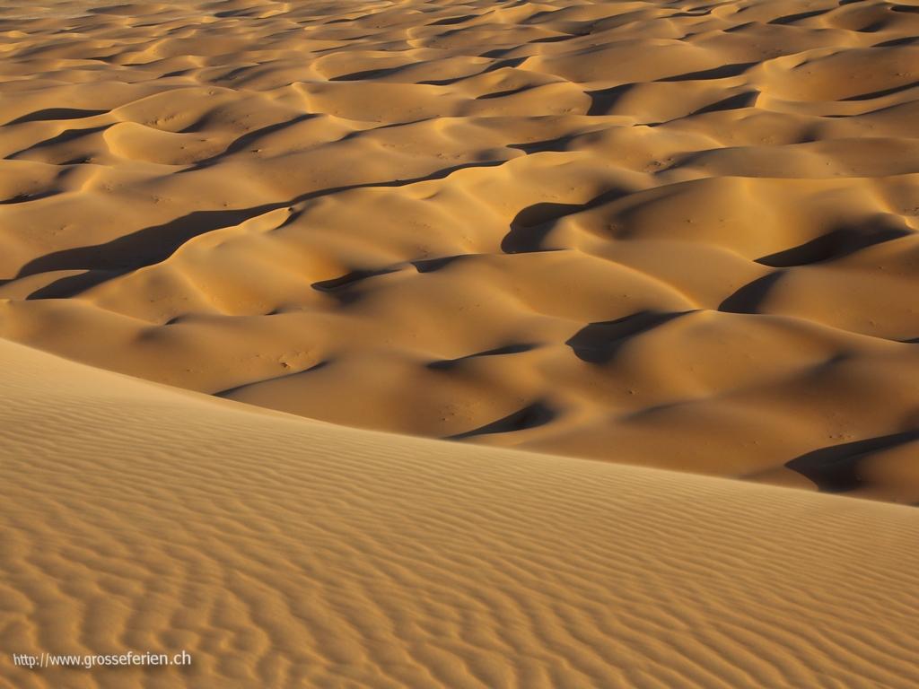 UAE, Liwa, Desert