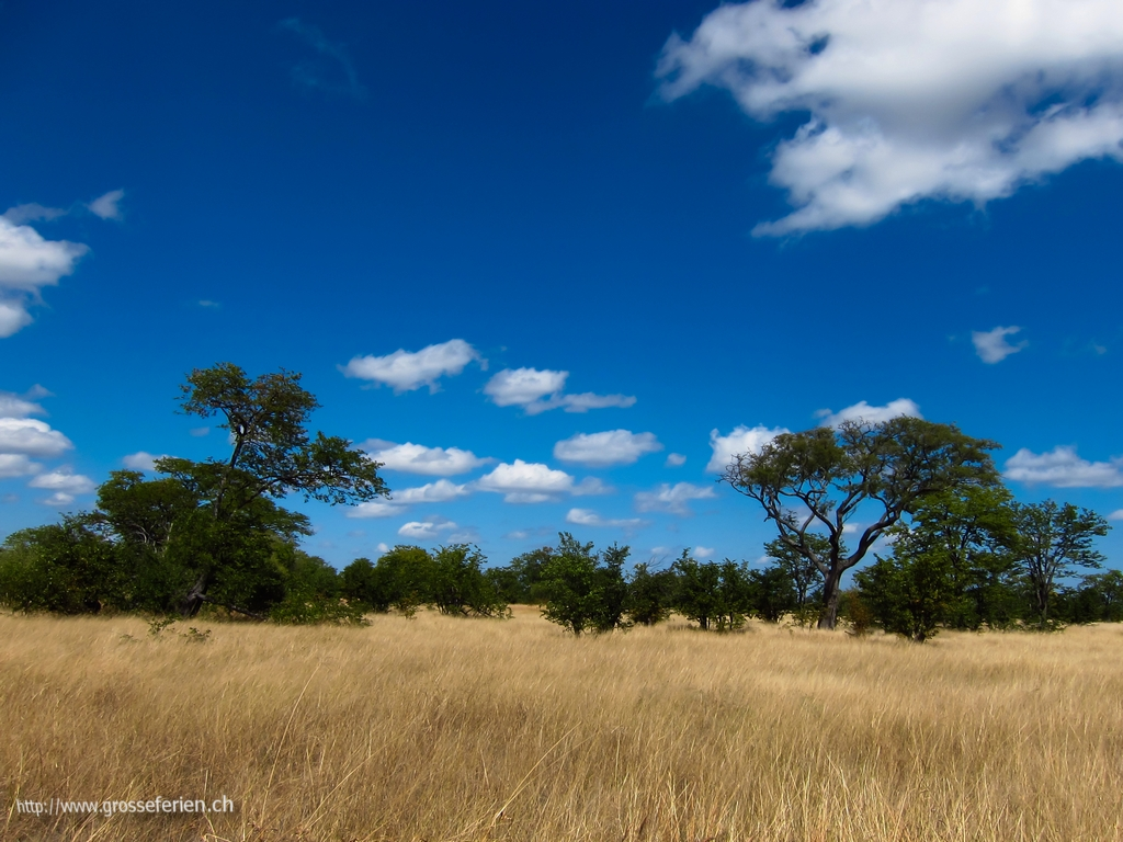 Zimbabwe, Hwange National Park, Sunset